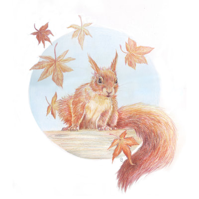red squirrel and falling autumn leaves